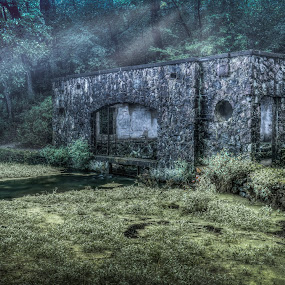 Paradise Springs by Brad Bellisle - Buildings & Architecture Decaying & Abandoned ( spring, springhouse, sunrays, hdr )