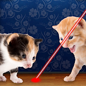 Laser Pointer for Cat Joke