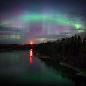 by Charles Adam - Landscapes Starscapes ( lights, northern, water, shore, pines, calm, clouds, stars, aurora borealis, aurora, northern lights, trees, lake )