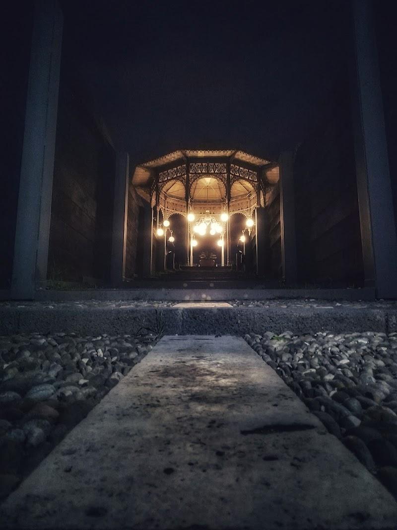 A light in the dark di adele_iurato