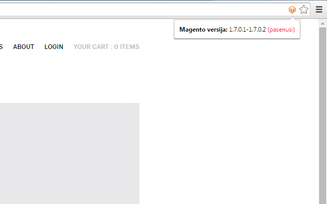 Version Check for Magento