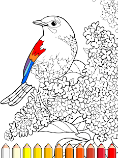 Coloring Expert - Android Apps on Google Play