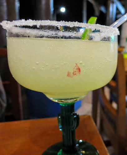 Things to Do in La Paz Mexico // Margarita Time