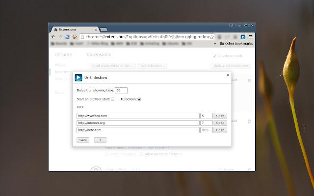 url slideshow chrome web store