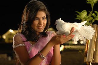 Photo: Rhea Chakraborty Stills From Tuniga Tuniga Movie, More at http://www.localmovies.in/rhea-chakraborty-stills-from-tuniga-tuniga-movie