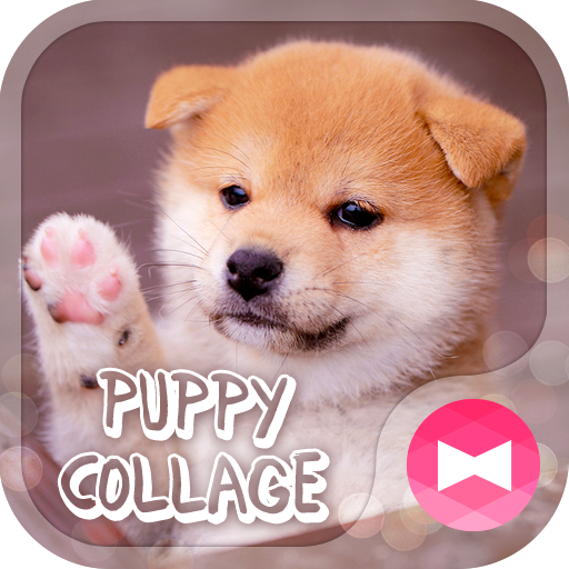 Cute Wallpaper Puppy Collage Theme Icon
