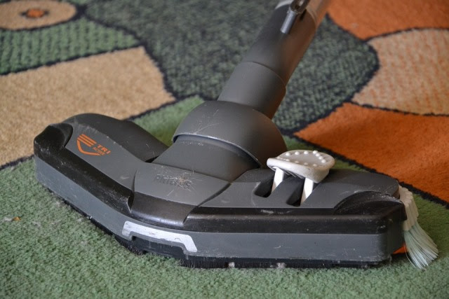 Why Is it So Important to Hire a Professional Carpet Cleaner?