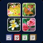 4 Pics 1 Word - Test your IQ Icon