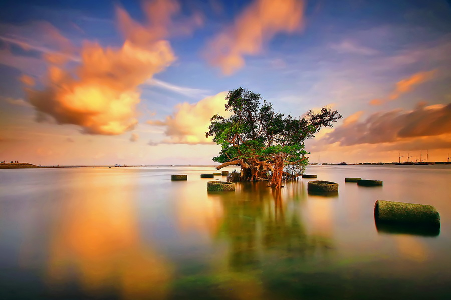 Still Alone by Agoes Antara - Landscapes Waterscapes