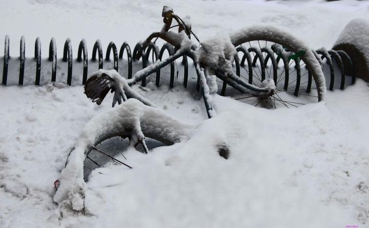 Sotto la neve il...... la bicicletta di AlfredoNegroni