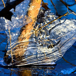 Receding ice  by Jeff Sluder - Nature Up Close Other Natural Objects ( water, ice )
