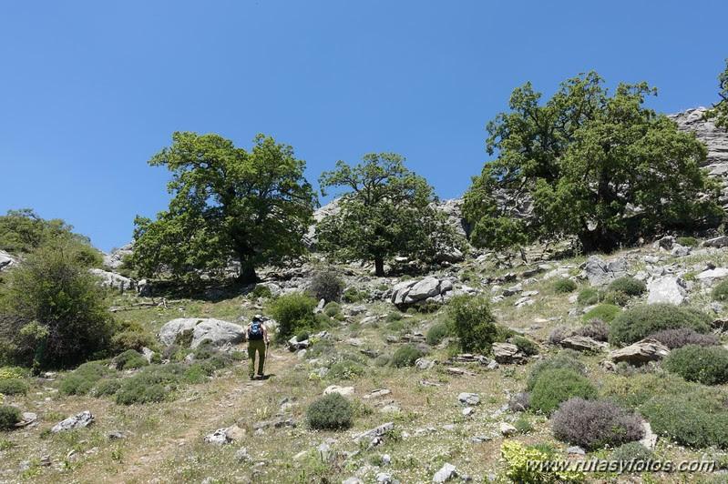 Mirador del Caucon-Tajo de la Caina-Peñón de los Enamorados