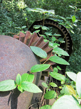 Photo: Gears overrun with vines at the machine graveyard at Carriage Hill Metropark in Dayton, Ohio.