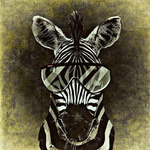 Zebra Find 1.0 screenshots 1