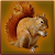 Forest Squirrel Simulator file APK Free for PC, smart TV Download