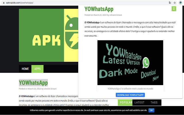 YOWhatsApp by ApkRapido