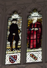 Photo: Stained glass window depicting Charles Darwin in Christ's College, Cambridge University. Copyright George Beccaloni.