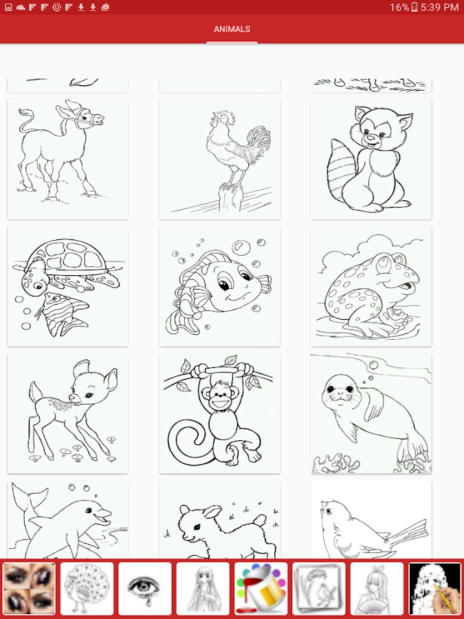 drawing picture of animals