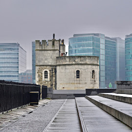 Old & New  by Sue Fisher - Buildings & Architecture Other Exteriors ( leadinglines, buildings, toweroflondon, oldandnew, architecture )