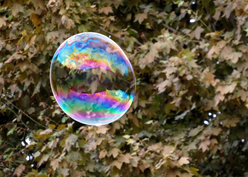 Il palazzo in una bolla di Giorgio Lucca