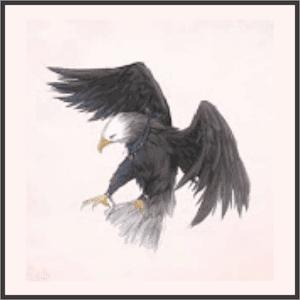 黒羽の狩人