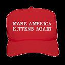 DownloadMake America Kittens Again Extension