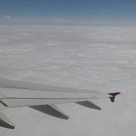 plane over the clouds by Luisa Androne - Landscapes Weather ( plane, flying, clouds )