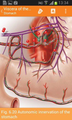 Sobotta Anatomy  Screenshots 6