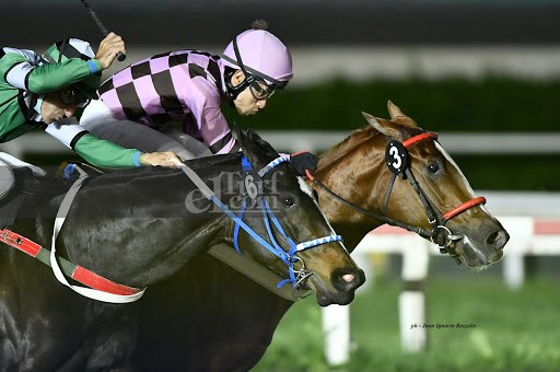 Brisa Pampa (South Kissing) se queda con la victoria en Condicional (1000m-Arena-PAL).