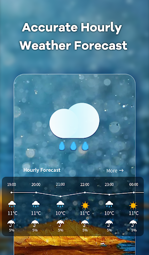 Local Weather screenshot 3