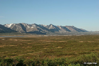 Photo: Denali Highway