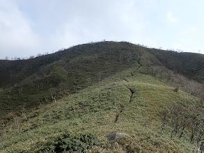 笹原を山頂へ