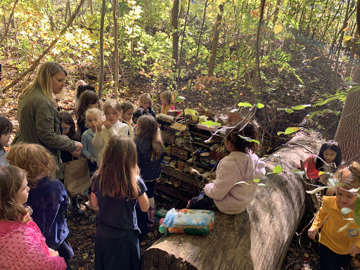 When should kids begin their environmental education? Learn about the importance of having environmental activities infused into school curriculum now!