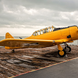 T6-SNJ Texan by Richard Michael Lingo - Transportation Airplanes ( aircraft carrier, uss lexington, planes, transportation, airplanes )