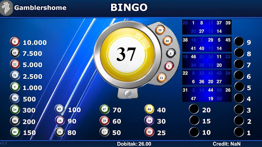 Gamblershome Bingo 2.4.3 screenshots 4