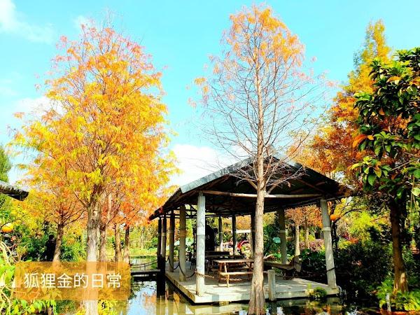 田寮農莊 台中南屯古早味農家菜 隱身於台中市區的落羽松秘境景觀餐廳