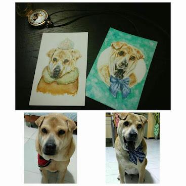 手繪寵物postcard