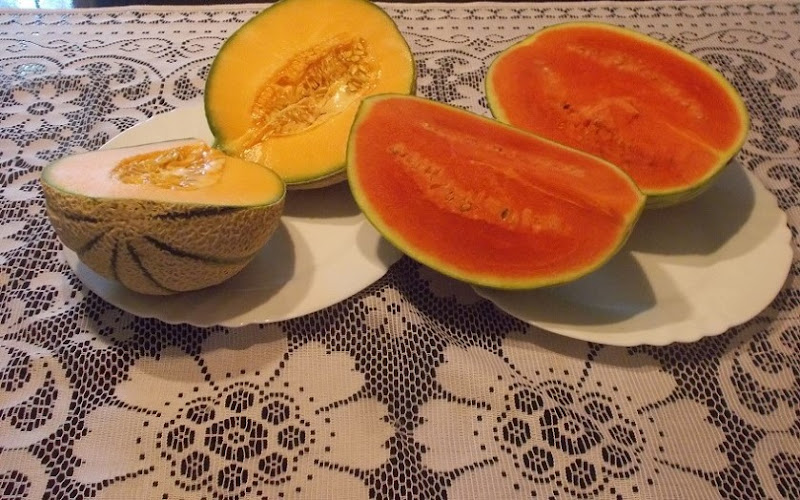 Frutti di Stagione di Pretoriano