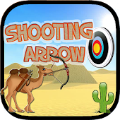 Shooting Arrow