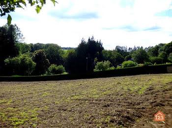 terrain à Saint-Carreuc (22)