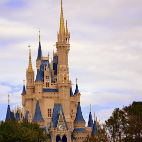 Disney Land by Colleen Rohrbaugh - Buildings & Architecture Other Exteriors ( buildings, travel, architecture, design )