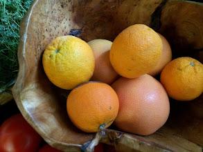 Photo: Citrus Fruits