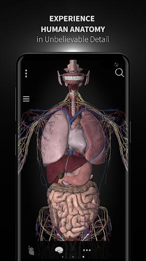 Anatomyka - 3D Human Anatomy Atlas 1.8.5 screenshots 1