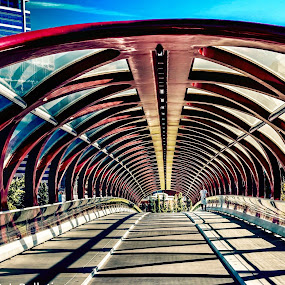 by Rick Pelletier - Buildings & Architecture Bridges & Suspended Structures