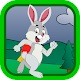 Easter Rabbit run