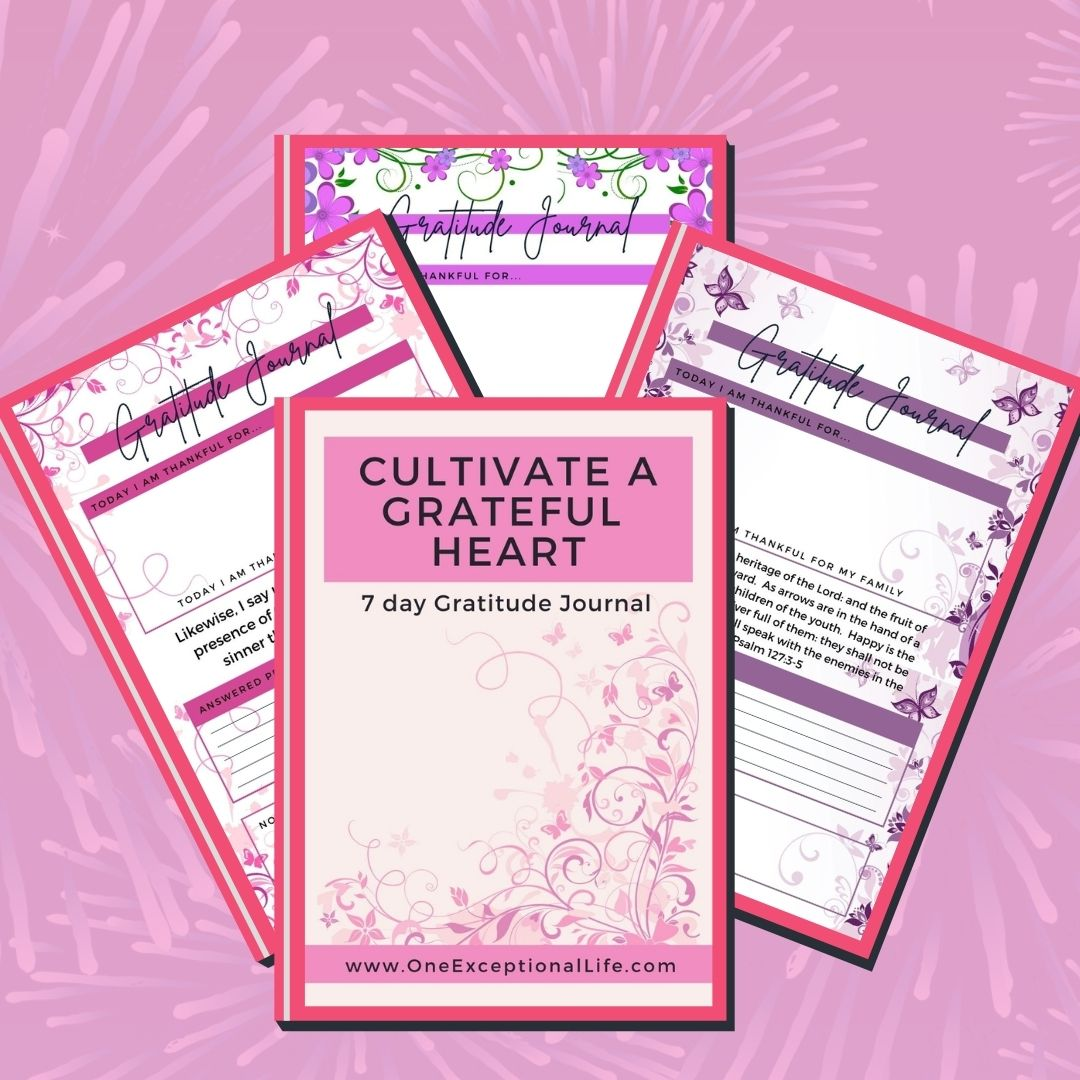 Grab your Gratitude Journal here