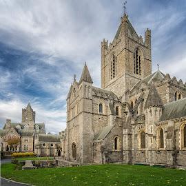 Trinity, Dublin by Angela Higgins - Buildings & Architecture Public & Historical