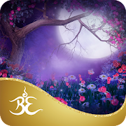 App Icon for Mindful Magic Meditations by Colette Baron-Reid App in Czech Republic Google Play Store