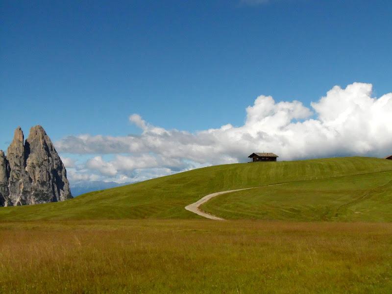 Magnifica Alpe di Siusi di supergigi