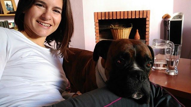 Consejos vacunar perro